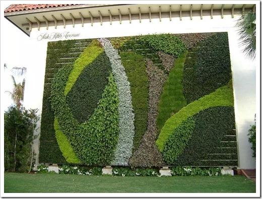 Вертикальное озеленение – что это?