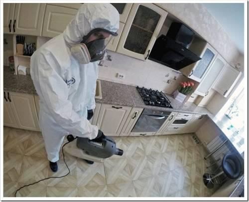 Профессиональная обработка от клопов в Вологде в квартирах от компании dezinfector35.ru