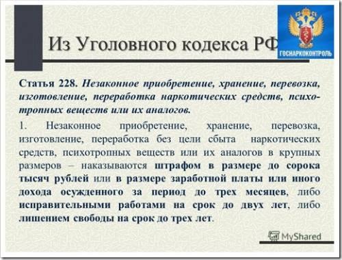 Статья 228 УК РФ - что означает, какой срок и наказание
