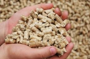 Оборудование для гранулированных и экструдированных кормов