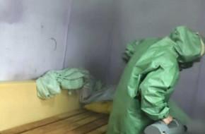 Профессиональная обработка квартиры от клопов в Подольске и уничтожение насекомых туманом навсегда