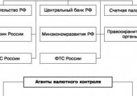 Что такое валютный контроль в РФ?