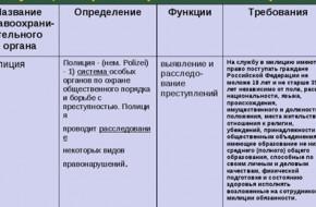 Функции и обязанности полиции в России