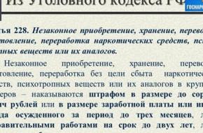 Статья 228 УК РФ — что означает, какой срок и наказание