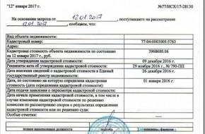 Какие документы нужны для получения выписки из ЕГРН и как ее взять