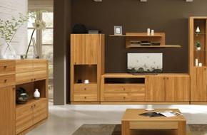 Деревянная мебель в гостиную под заказ