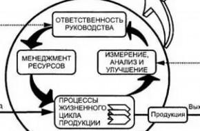 Документы СМК на предприятии — что это и что к ним относится